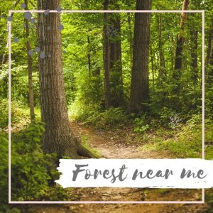Forest near me